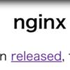 nginx unit 1.6 リリース!