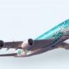 ANAが2日前に全便欠航を決めた理由