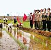 今日も憂鬱な朝鮮半島61 北朝鮮の中高生「夏休み」は「農村支援」の強制労働