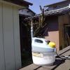 梅の消毒 「庭いじりの贅沢」
