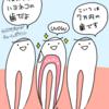 歯を細工されたハヨネコ