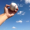 プロ野球選手(トライアウト)のセカンドキャリア