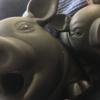 【鹿児島県でとんこつと言えばラーメンではない!】鹿児島の郷土料理「とんこつ」は、豚肉好きなら必食の料理。