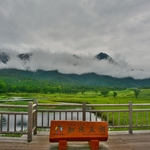 世界自然遺産 知床国立公園「知床五湖」地上遊歩道と高架木道を歩く!!