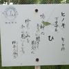万葉歌碑を訪ねて(その513)―奈良市法蓮佐保山 万葉の苑(16)―万葉集 巻七 一〇九二