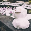 少しの雪景色
