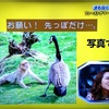 2020/01/21〜忍者ロック〜