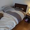 ベッド周り片付けました