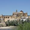 【コルドバ観光】コルドバのメスキータ!スペインに現存する唯一の大モスクを楽しむ!