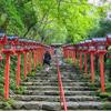 【京都・神社巡り】貴船神社のあれこれ