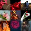 アメブロ、Instagram、Facebookに作家「琴華」さんの詩をご紹介しました。
