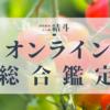 オンライン総合鑑定のご案内(四柱推命 占い師 結斗)