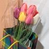 3月15~16日のちち飯、ちち弁、花を貰う。