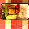 【料理】今週のお弁当まとめ(1/27~1/31)