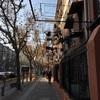 初めての室内撮影会IN上海(前篇)-クリスマスっぽいサンタの写真