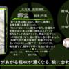 【木曜日の季節物】郷宝 純米 吟風【FUKA🍶YO-I】