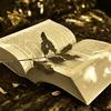 「引き寄せ」の教科書を読んだ感想。入門者・再確認におすすめ!