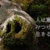 屋久島の森が教えてくれたこと その4 人は意味をみつけて生きる