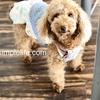 Blue Moon 三浦海岸の犬と行けるレストランへ。③