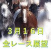 【3月16日 土曜日競馬】荒れるレースと堅いレース展望!【複勝転がし】メインレースの凌ぎ馬券までに資金を増やす