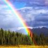『 虹色の毎日 』