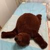 蒸し暑い夜、子供は睡眠中すごい汗で背中に汗疹が出来ます。そんな時は「エアコンマット」や「エアリーマット」がオススメです。