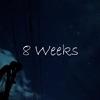 ブログを書き始めて8週間|PV&所感&収入