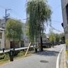 新暦で本能寺の変なので、京都へ行ってきた☆