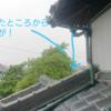 雨が降っているからこそ、雨漏りの原因が判明することがある。