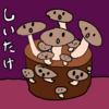 しいたけニョキニョキ1~2日め、ネコちゃんず(ΦωΦ)(=^・^=)(20180530_01)
