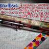 ねこ日記(4/17~4/19) #万年筆 #ねこ #ほぼ日手帳 #日記