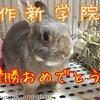 (●゚◇゚●)作新学院、夏の甲子園制覇!おめでとう!