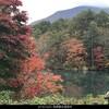 10月25日(木)エクスカーション裏磐梯から会津へ