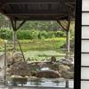 【宿泊レポ】リゾート地で温泉も堪能!シェラトングランデオーシャンリゾートの松泉宮