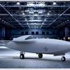 Skyborg program seeks industry input for artificial intelligence initiative