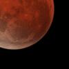 明日は3年ぶりの皆既月食です!夜空を見上げましょう!