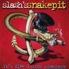 スラッシュ、スネイクピットが原因でガンズを弾かれる!?(Slash's Snakepit )