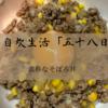 【レシピ】豚ひき肉を使った簡単そぼろ丼で優勝する。毎日自炊生活「五十八日目」