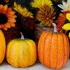 【簡単、美味しい!】蒸し器で作る濃厚かぼちゃプリンの作り方!かぼちゃペースト活用レシピもあるよ
