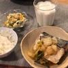ごはん、サバと白菜の煮物、マカロニサラダ
