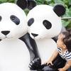 【上野動物園】夏休み明け平日の待ち時間は?パンダ観覧レビュー