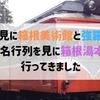 紅葉見に箱根美術館と強羅公園へ、大名行列を見に箱根湯本へ行ってきました