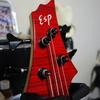 ESP BTL LISA II (BanG Dream! Roselia 今井リサ モデル)