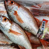京都・丹後の贅沢肉厚『のどぐろ』間人港から本日も大量入荷!間人の秋の味覚を是非!