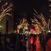 NIIGATA光のページェント2011スタート(12/9-1/9)