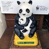 上野動物園に行ってきました:2016年度第2回懇和会