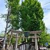 大将軍神社の新緑。