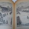 描かれた明代紫禁城の象たち