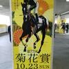 馬券を買わずとも、競馬場は楽しい。   菊花賞2016  観戦旅行記  2日目