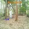 【狂犬通信 Vol.72】駿河國志太郡・朝日山城